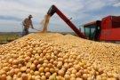 Brasil deve colher entre 210,5 e 214,8 milhões de toneladas para safra 2016/2017