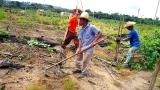 Semeando Sustentabilidade: Começaram os trabalhos para recuperação de áreas