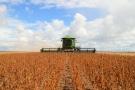 Prazo para cadastro de lavoura de soja encerra nessa sexta-feira, dia 30