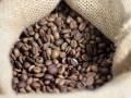 Safra de café em Rondônia deve ser de quase dois milhões de sacas neste ano