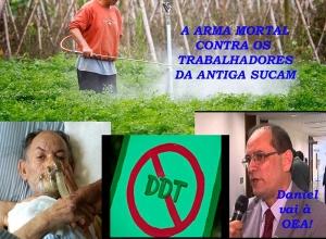 A luta do Sindsef para fazer justiça às vítimas do DDT