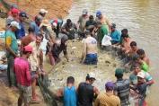 Consultor do Ministério da Pesca fala de importância de diálogo entre governo e piscicultores