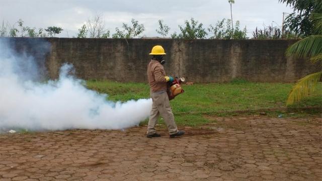 Porto Velho registra nível médio de risco de infestação de dengue em fevereiro