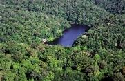 Criação de unidade de conservação será discutida em audiência pública no distrito de Nova Mutum Paraná