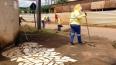 Mutirão de limpeza no Bairro Areal da Floresta termina neste sábado