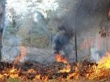 Prefeitura de Jaru alerta população sobre queimadas urbanas
