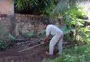Homem mata companheira e enterra no próprio quintal; filha denunciou caso à Polícia