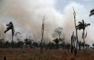 Corpo de Bombeiros registra cerca de 15 denúncias diárias sobre incêndios em Porto Velho