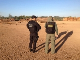 PF, Ibama e Receita deflagram Operação Máfia da Tora em Rondônia