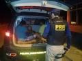 Dois são presos no posto da PRF com quase 3 quilos de cocaína