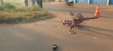 Ciclista morre atropelada por caminhão