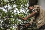 Vídeo: Documentário sobre o projeto semeando é uma lição de sustentabilidade