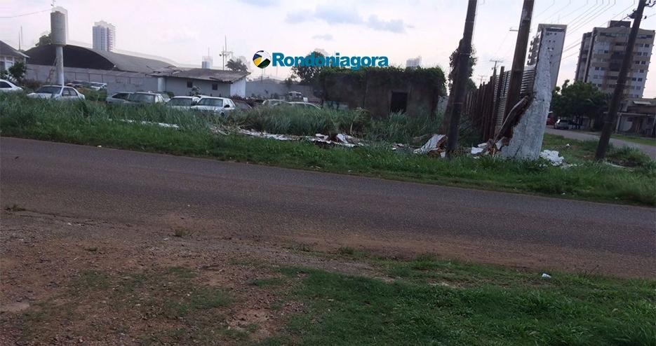 Vídeo e fotos: Novo temporal deixa rastro de destruição na Capital