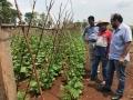 Laerte Gomes faz gestão em prol de horticultores da região de Ji-Paraná