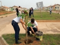 Prefeitura inicia arborização do residencial Cristal da Calama com 600 mudas de árvores