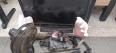 Jovem escondia motocicletas e outros produtos de roubo em prédio de creche abandonada na Zona Sul