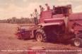 Agropecuária – É a hora e a vez de Rondônia
