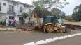 Equipe emergencial atua em remoção de árvores