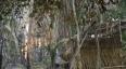 PM cumpre ordem judicial de reintegração de posse da Fazenda Santa Aline
