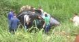Confirmada a terceira morte em acidente entre carreta e Pálio na BR-364
