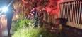 Adolescente é executado com tiros no tórax e na cabeça, em Ariquemes