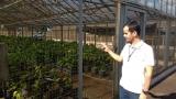 Tecnologia aumenta produtividade da agricultura familiar em Rondônia, garante Embrapa