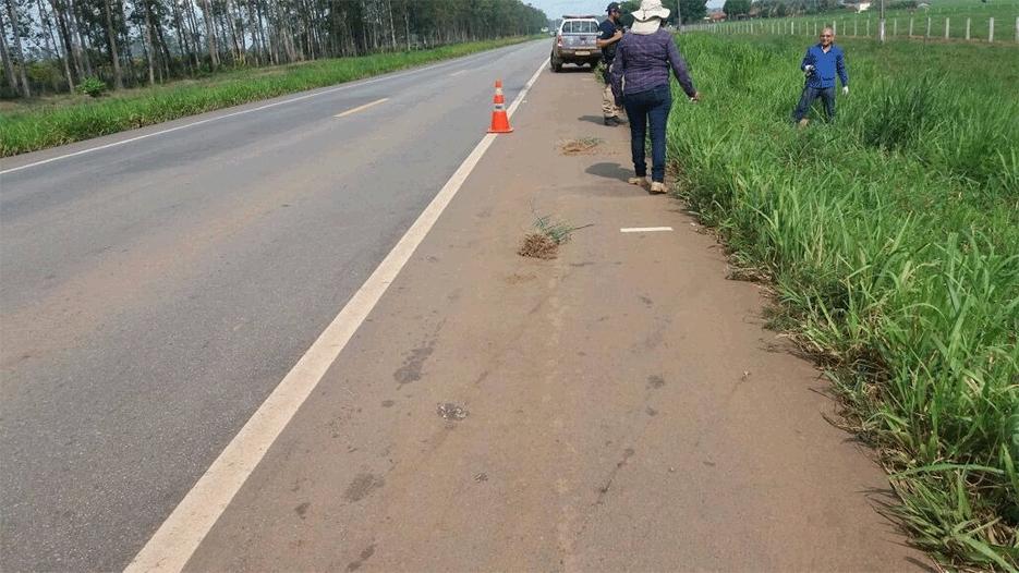 PRF não confirma se homem encontrado às margens da BR-364 foi vítima de acidente