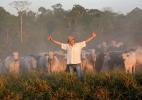 Pecuarista investe em sistema sustentável de produção