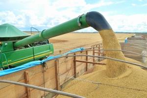 Rondônia terá o maior crescimento na produção de grãos na safra 17/18