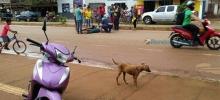 Mulheres ficam lesionadas ao caírem de moto tentando desviar de cachorro em Porto Velho