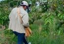 Semusa realiza ações na Zona Norte, após confirmação de morte de macaco por febre amarela