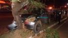Motorista embriagado foge após bater carro contra árvore; quatro pessoas ficaram feridas