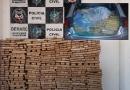 Denarc apreende quase 900 quilos de maconha com seis traficantes em Rondônia