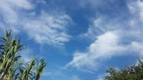 Sipam prevê friagem nesse sábado no Sul de Rondônia