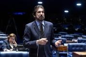 Senado aprova política nacional de incentivo ao cacau de qualidade