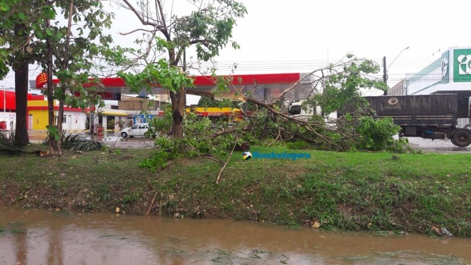 Fotos: Temporal causa destruição em Porto Velho neste sábado