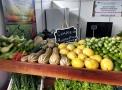 Produtores que fornecem alimentos para merenda escolar participam da Portoagro