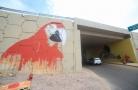 Projeto Graffizônia reúne grafiteiros e transforma viadutos de Porto Velho