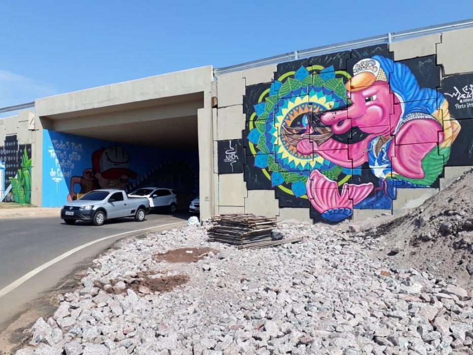 Viadutos de Porto Velho ficam mais coloridos com a arte de grafiteiros; confira fotos