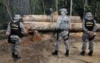 Publicada portaria que autoriza envio da Força Nacional para Amazônia