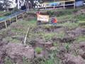 Nível do Rio Madeira chega a 11,89m e Defesa Civil diz que 2,5 mil famílias podem ser afetadas