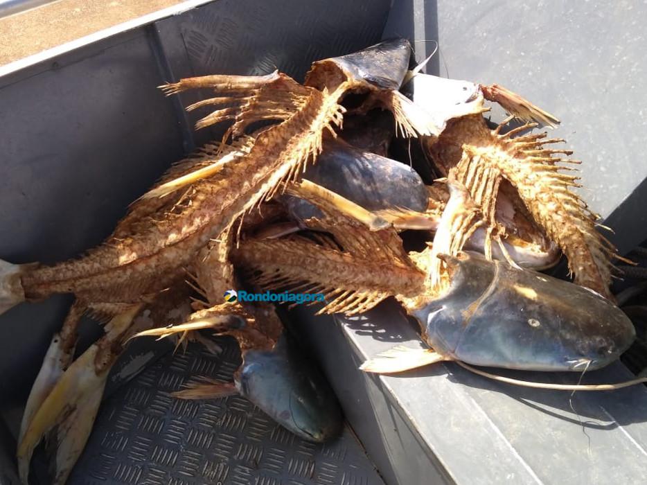 Três são presos pescando próximo a usina no Rio Madeira; Temporada de pesca está proibida