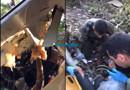 Vídeo mostra socorro a pilotos em meio aos destroços de avião no Mato Grosso