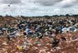 Lixão é reaberto e coleta normalizada em Porto Velho; Prefeitura e PM garantem segurança