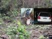 Homem é sequestrado e assassinado em distrito de Porto Velho