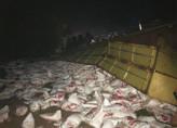 PRF registra 4 acidentes na BR-364 entre Ouro Preto e Jaru; 3 no trecho conhecido como curva da morte