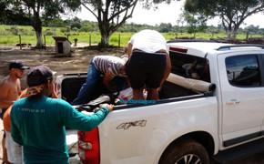 Vigilantes baleados durante tentativa de assalto a carro-forte seguem internados em Porto Velho