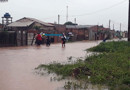 Casos de leptospirose podem aumentar no período chuvoso e em locais onde há acúmulo de lixo, diz Agevisa