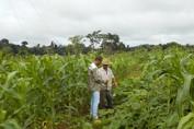 Projeto de desenvolvimento da agricultura familiar já cadastrou mais de 600 propriedades em Rondônia