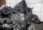 TCE faz fiscalização surpresa e encontra ratos em lixo do João Paulo II; Sesau diz que local não afeta pacientes
